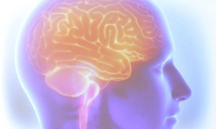Center cerebro